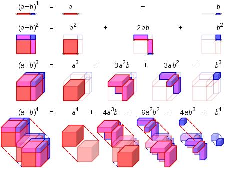 450px-binomial_expansion_visualisation-svg